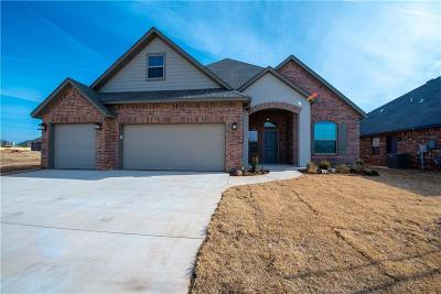 Norman Single Family Home For Sale: 3721 Burma Court