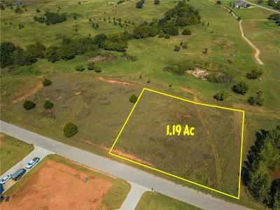 Blanchard Residential Lots & Land For Sale: Pintail Circle