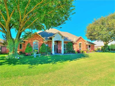 Moore Single Family Home For Sale: 3705 Meadow Lane