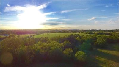 Farm & Ranch For Sale: County Road 1520