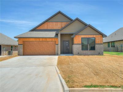 Shawnee Single Family Home For Sale: 4309 Hyatt Road