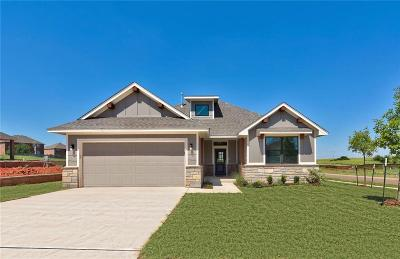 Single Family Home For Sale: 17817 Morning Sky Court
