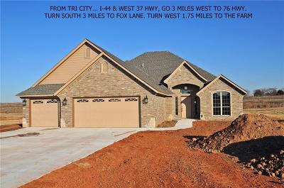 Blanchard OK Single Family Home For Sale: $300,000