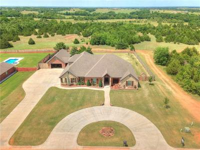 Norman Single Family Home For Sale: 3131 Firefly Drive