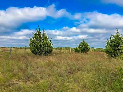 Blanchard Residential Lots & Land For Sale: Blanchard
