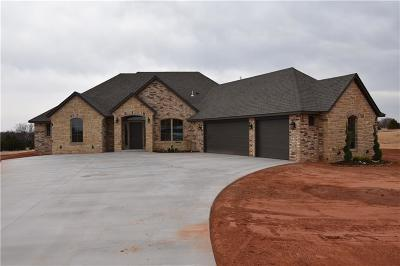 Blanchard OK Single Family Home For Sale: $317,737