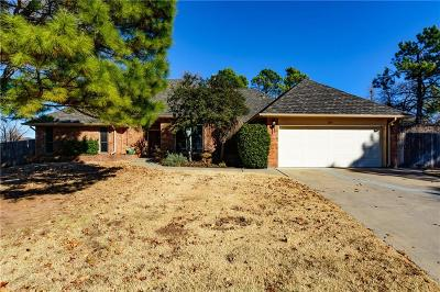 Norman Single Family Home For Sale: 2119 Martingale Drive