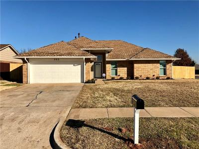 Norman Single Family Home For Sale: 203 Cindy