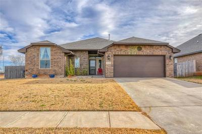 Norman Single Family Home For Sale: 529 Hunter Drive