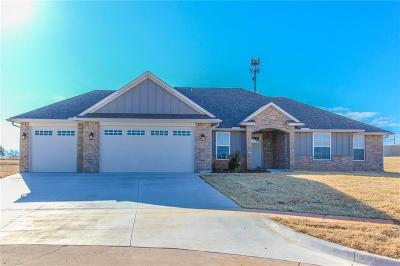 Single Family Home For Sale: 2008 Wood Valley Court