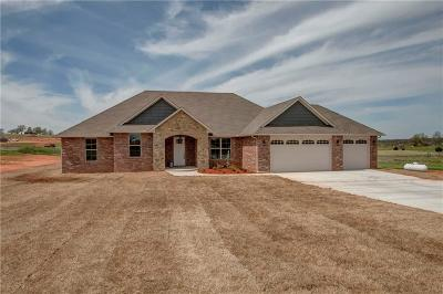 Blanchard OK Single Family Home For Sale: $315,000