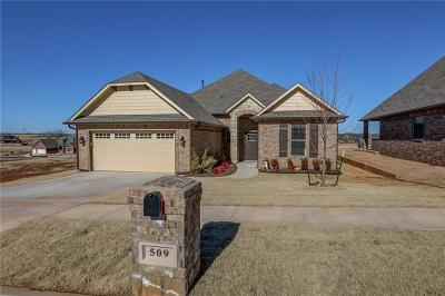Norman Single Family Home For Sale: 509 Timberbrook Drive