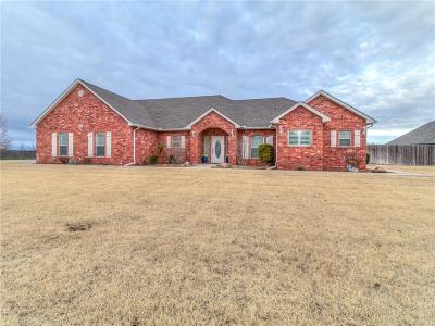 Beckham County Single Family Home For Sale: 1201 N Falcon