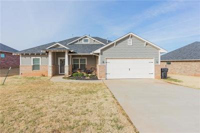 Single Family Home For Sale: 205 Lyla Glen Drive