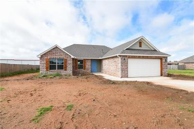 Moore Single Family Home For Sale: 658 SW 11th