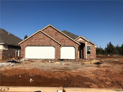 Norman Single Family Home For Sale: 1227 Stone Creek Drive