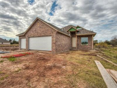 Norman Single Family Home For Sale: 1302 Pebble Pond