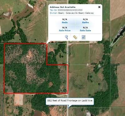 McClain County Residential Lots & Land For Sale: 00000 Ladd Avenue