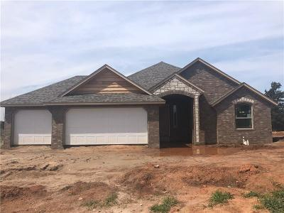 Norman Single Family Home For Sale: 1210 Pebble Pond Drive