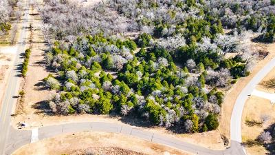 Norman Residential Lots & Land For Sale: 7700 Vista Springs