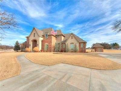 Norman Single Family Home For Sale: 1251 Wandering Oaks Lane