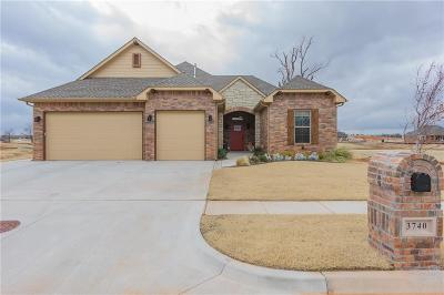 Norman Single Family Home For Sale: 3740 Timberbrook Drive