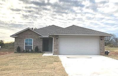 Norman Single Family Home For Sale: 4204 Condor Drive