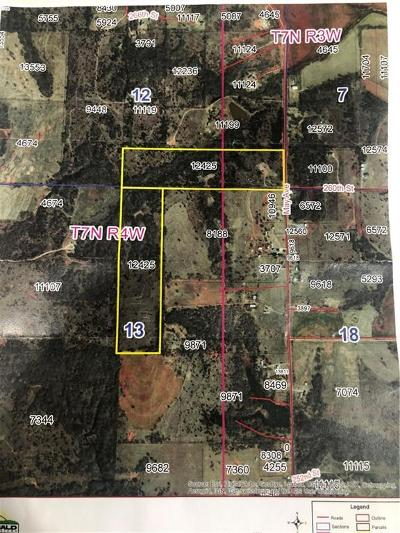 McClain County Residential Lots & Land For Sale: S 80 Acres-May Avenue