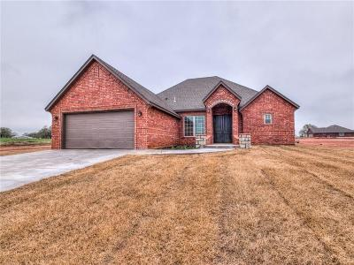 Blanchard Single Family Home For Sale: 12681 Summit Lane