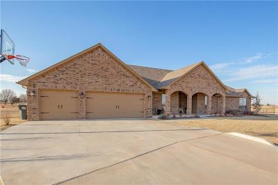 Single Family Home For Sale: 4061 Lonetree Drive