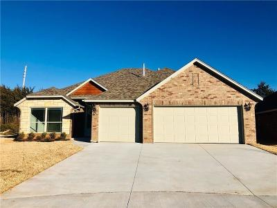 Norman Single Family Home For Sale: 3101 Stone Creek Drive