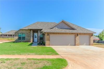Norman Single Family Home For Sale: 3225 Valley Meadow