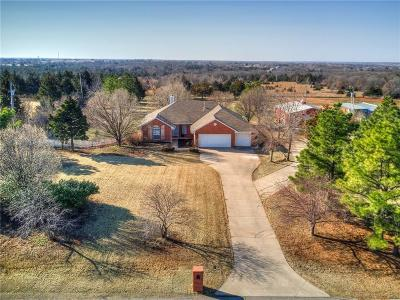 Single Family Home For Sale: 1812 Cinnamon Ridge Road