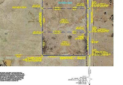 Blanchard Residential Lots & Land For Sale: Tract1-Hwy 19c Highway