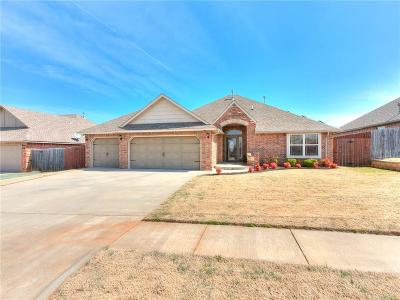 Norman Single Family Home For Sale: 405 Starshine Drive