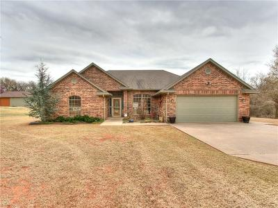 Blanchard Single Family Home For Sale: 1510 Blue Bird Manor