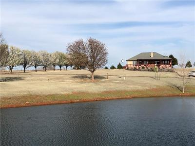 Cashion OK Single Family Home For Sale: $445,000