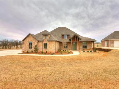 Blanchard Single Family Home For Sale: 2291 Summit Circle