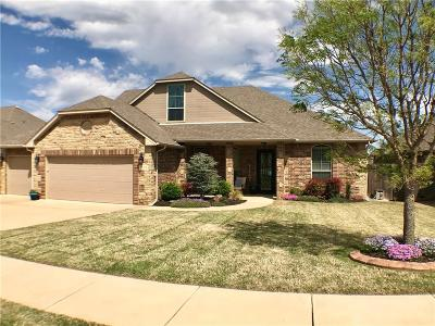 Norman Single Family Home For Sale: 3103 Tara Lane