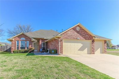 Norman Single Family Home For Sale: 2421 Birmingham Drive