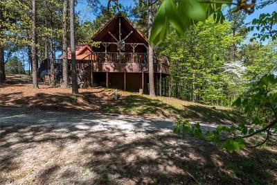 Broken Bow Single Family Home For Sale: 120 Pecan Bend Lane