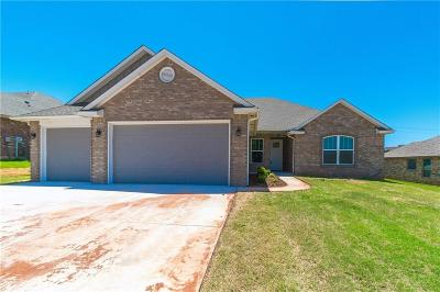 Blanchard Single Family Home For Sale: 308 Appaloosa Drive