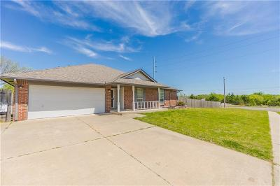 Norman Single Family Home For Sale: 2325 Alex Plaza Drive