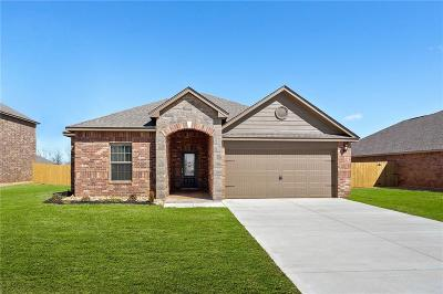 Mustang Single Family Home For Sale: 317 E Georgia Terrace