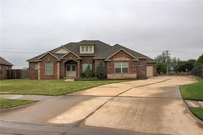 Oklahoma City Single Family Home For Sale: 6313 Green Meadow Lane