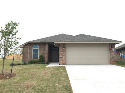 Norman Single Family Home For Sale: 3901 Colefax Lane