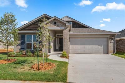 Norman Single Family Home For Sale: 905 Old Frisco Road