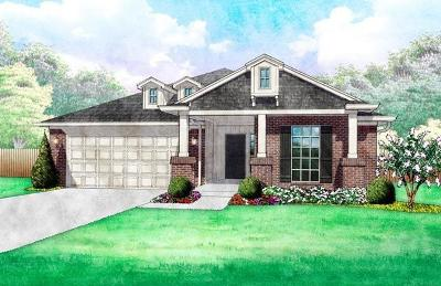 Norman Single Family Home For Sale: 3100 Old Frisco Road