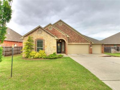 Norman Single Family Home For Sale: 3102 Timber Shadows Drives