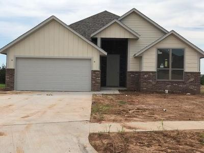Norman Single Family Home For Sale: 3116 Pebble Pond